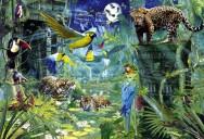 Puzzle 4000 - Padurea Azhtec